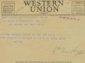 telegram-20001